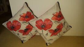 Beautiful Next cushions