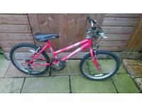 Girls raleigh mountain bike