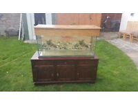Fishtank in good conditions 240l with shelf used