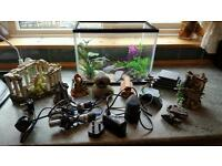 15 litre fish tank and accessories