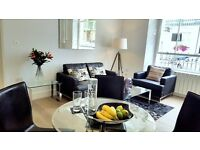 RELAXING AREA~FULLY FURNISHED LUXURY 1BEDROOM FLAT WITH MEZZANINE~AVAILABLE NOW~07858427611
