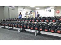 Jordan Dumbell Set with Racks - 2.5kg to 50kg