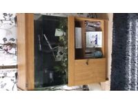 fish tank full set up includes heater,light,pump,gravel,ornaments,and 6 fish if wanted.