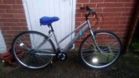 Ladies Apollo Excelle bike