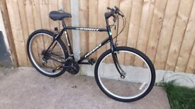 Probike black Knight mountain bike
