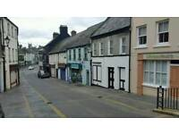 2 properties for sale in downpatrick
