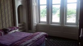 Spacious large double bedroom to rent fully furnished !!