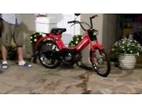 Honda camino pa50