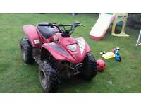 100cc automatic 2 stroke apachi quad runs great first £250 takes it comes with one key