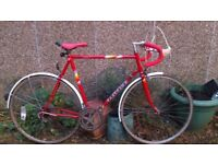 Peugeot Road Bike - Joey Mcloughlin frame