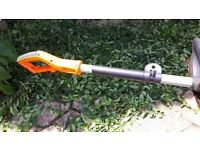 Electric Pole Hedge Trimmer.