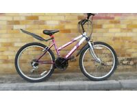 FULLY SERVICED 24 INCH WHEELS MAGNA NEVADA BICYCLE