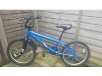 Apollo Chaos BMX Boys Bicycle