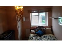 Double room for YOU move in today