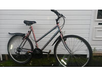 LADIES RALEIGH HYBRID BIKE WITH LOCK AND LIGHTS- LARGE £60