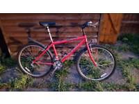 "Raleigh Firefly 21"" wheel Bike"