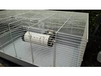 Rat rodent rabbit large cage