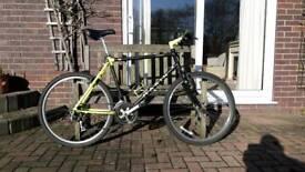 Marin Retro Bike
