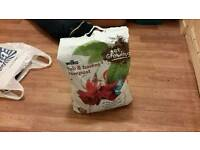 Free bag of house plant compost