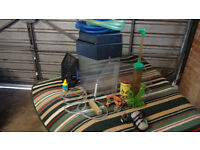 Hexafun fish tank with all accessories