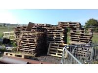 Free Timber Pallets ,