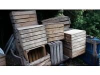 wooden crates for display storage or garden potato chitting tray