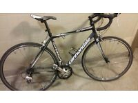Road Bicycle - Cannondale Synapse 2300 Triple 2013 54cm/ Medium (Endurance Bike)