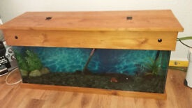 STILL AVAILABLE DUE TO SCAMMER! ! 4FT aquarium with custom custom made hood and bits and bobs