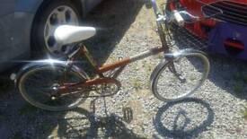 BSA shopper cycle