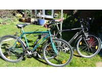 MOUNTAIN BIKES A PAIR, WELL MAINTAINED, DRY STORED