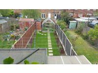 Greenhouse 12 x 8