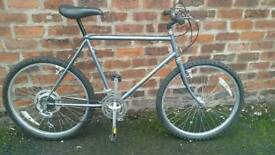 Old skool Raleigh