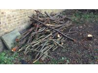Free Fire Wood - different sizes (collect by weekend)