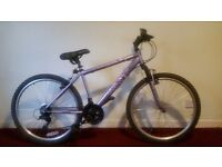 """Apollo Jewel Ladie's Mountain Bike Excellent condition with Light's 17"""" Frame"""