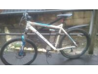 "22"" CARRERA Kraken blue/white - great bike for on/off road - 1 year old great condition £300 ono"