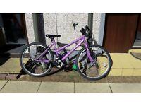 "Mountain Bike, British Eagle Verona, 18 gears 26"" wheels"
