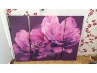 Large purple canvases