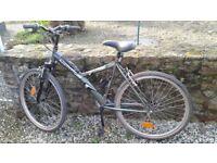 Quantum French unisex mountain bike