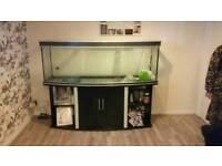6 ft aqua one fish tank