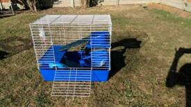 Large rodent cage with accessories