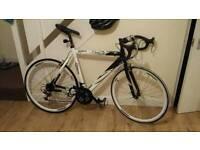 Baracuda super bike