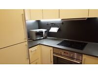 Modern One Bedroom Flat in Isleworth with a Balcony * Close to Brentford and Syon Lane