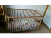 An excellent condition pine cot with mattress waterproof cover for quick sale