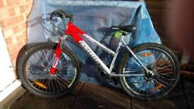 Issimo mountain bike, immaculate condition