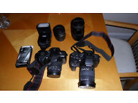 Sigma SD1 46mp camera, SD14 14.6mp camera, 4 lenses, flashgun and accessories