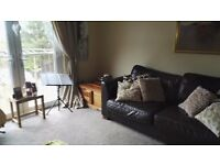 3 bed top flat in Larbert close to motorways train station
