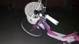 Giant Bella bike