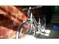 Ladies Ridgeback bike (nearly new)