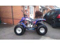 Quad bike 03 plate