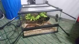 Vivarium full set 45x45x30cm heatmat,microstat100, accessories